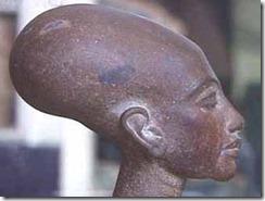 Nefertitis skalle som kunst