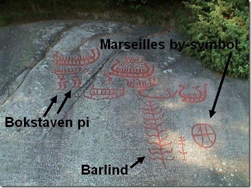 Solbergfeltet pi og barlind