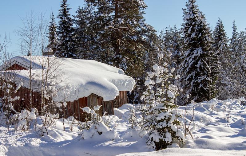 Julussdalen vinterbilde (1 of 1)