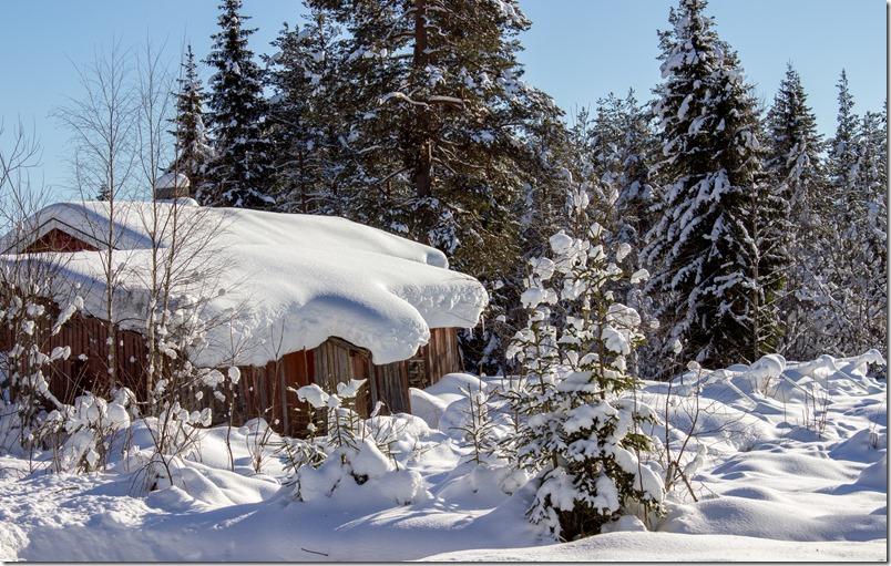 Julussdalen-vinterbilde-1-of-1_thumb.jpg