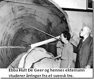 Ebba studerer treringer