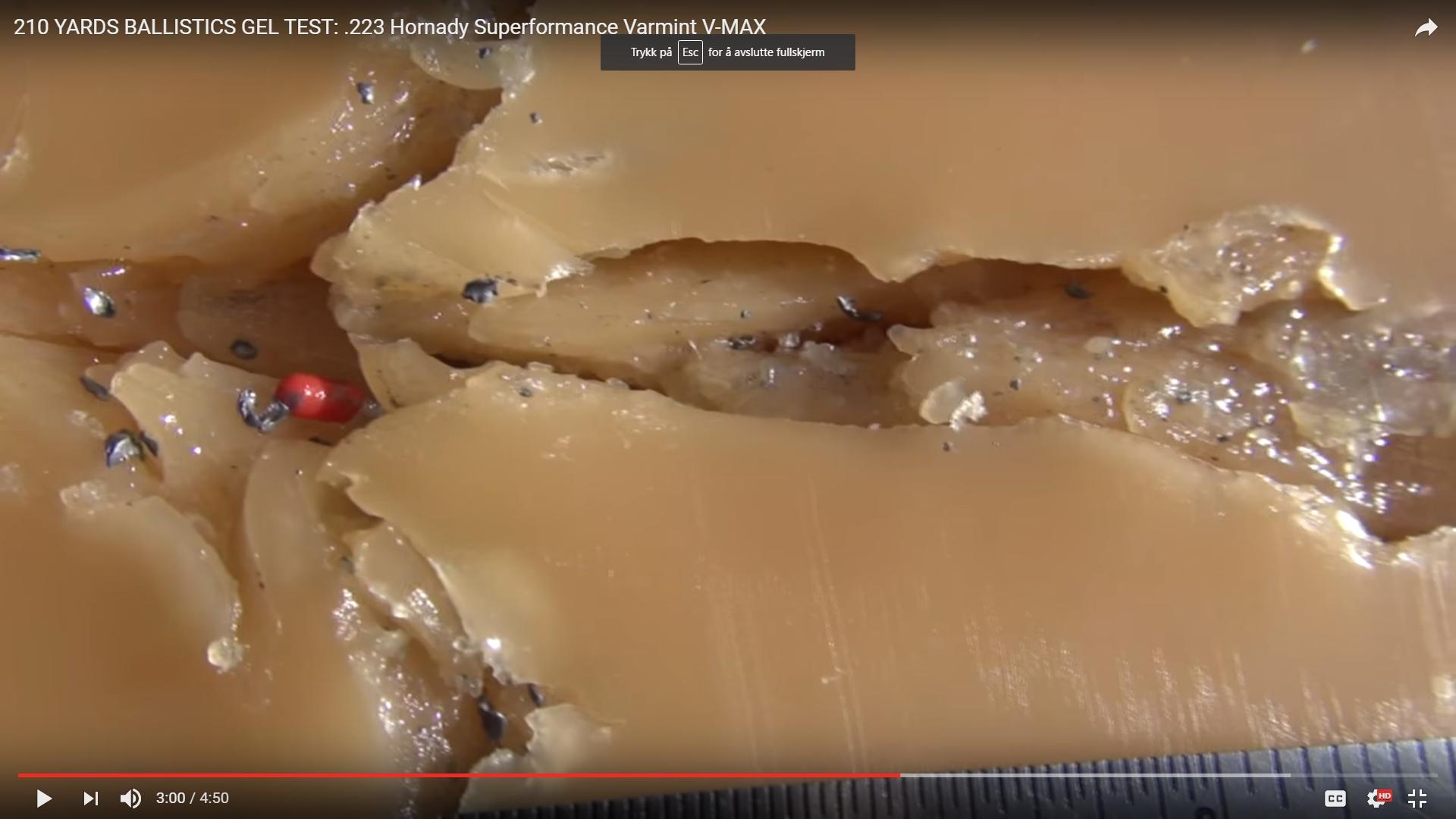 Hornady V-Max i kaliber .223. Skuddet er skutt inn i ballistisk gelantin fra 100 meters hold. Bildet viser en nær identisk treff-reaksjon som kirurg Colin Poole på Ringerike sykehus beskrev da han opererte skadde etter Utøya-skytingen. Slike kuletyper er altså å få kjøpt over disk, og er ikke ulovlig spesialammunisjon man må ha kontakter for å få tak i.
