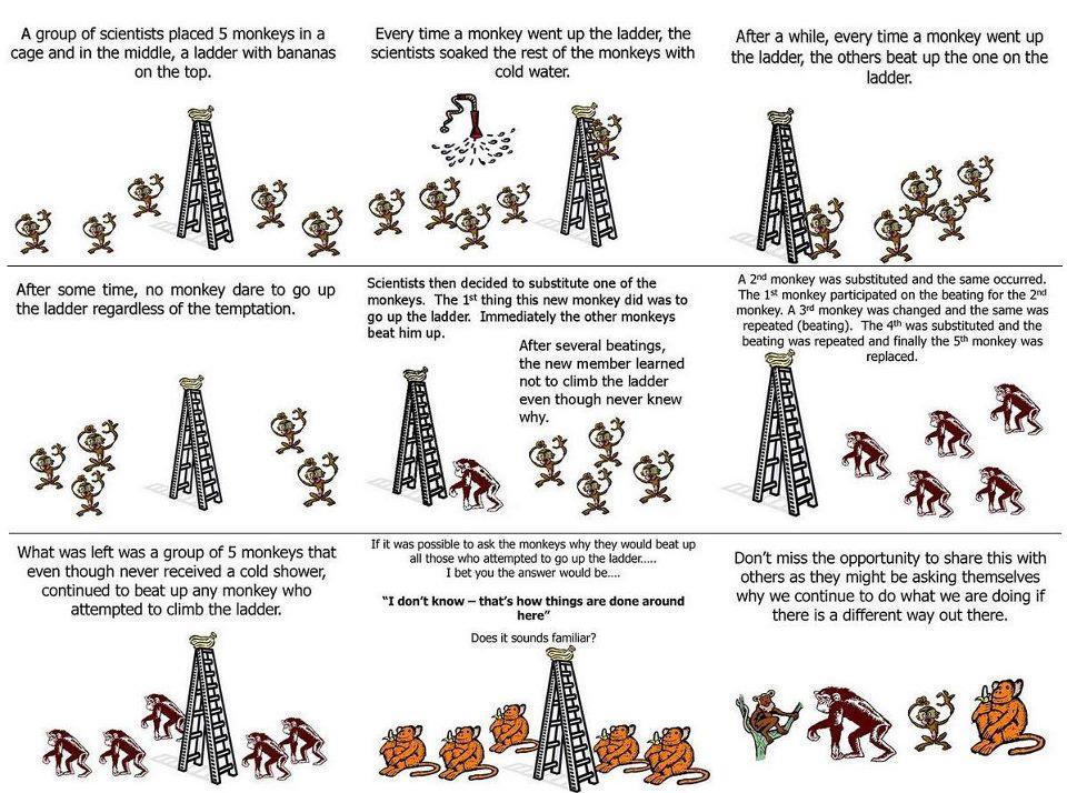 aper-vann-og-blind-lystring